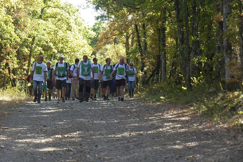 Marcheurs pour la forêt ONF
