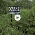 Image d'appel de Cash investigation : logo planté dans la forêt