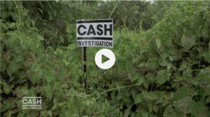 Cash investigation: RAZZIA sur le bois