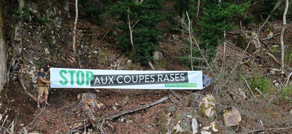 2 militants de sos forêt déploient une banderole dans une coupe rase.