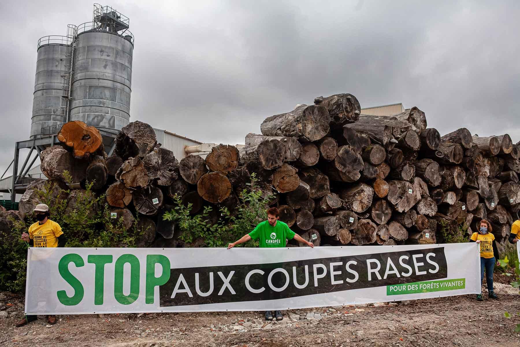 """""""Sur le front"""" des forêts Françaises, dimanche 21 mars"""