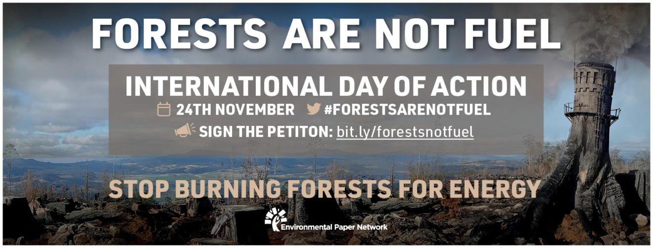 Biomass-International-Day-of-Action-banner---horizontal