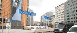 Pétition biomasse, vers les 200 000 signatures